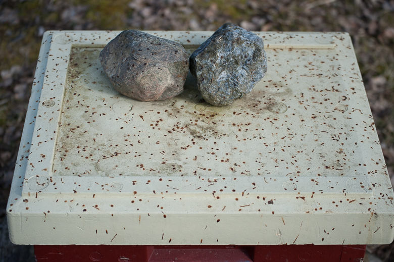 beehive roof full of bee poop